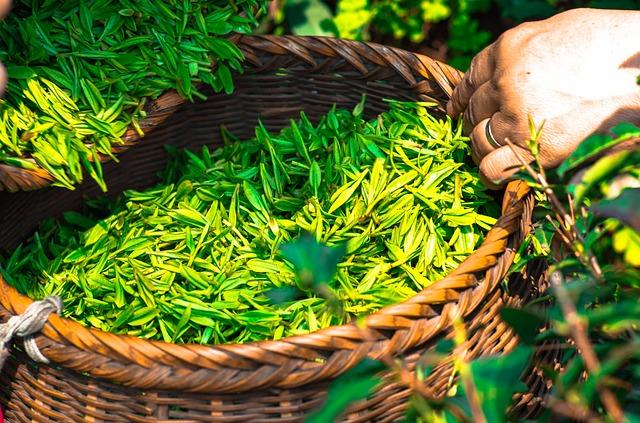Zrelaxujte u lahodného šálku ajurvédského čaje