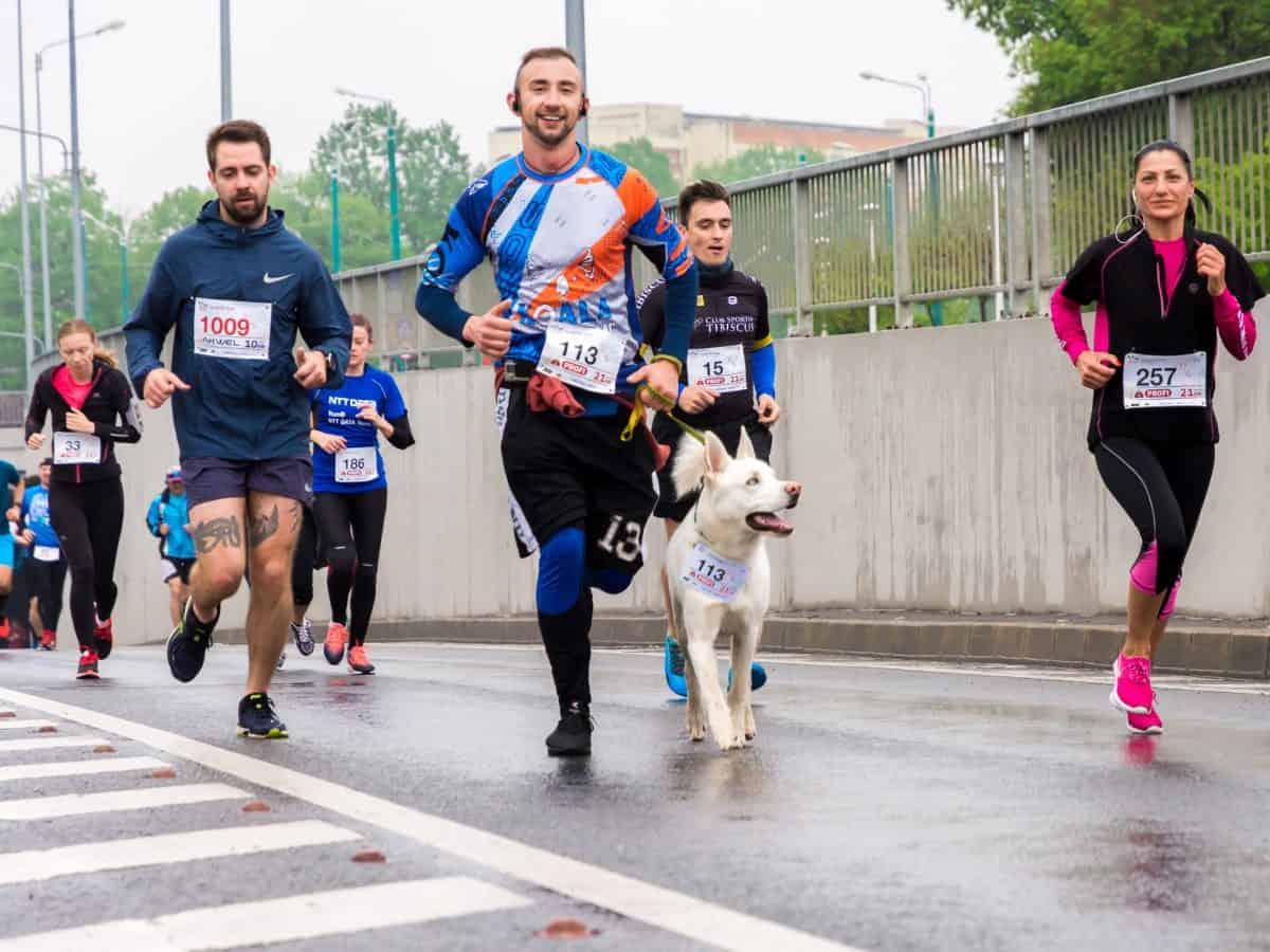 trenink na maraton